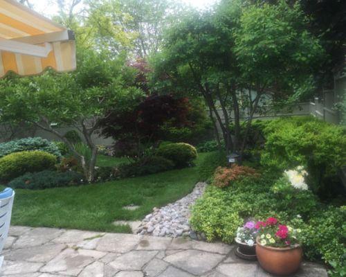 Portfolio for Home rain garden design